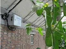 温室大棚空气温湿度监控系统