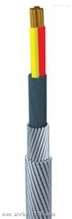 单芯氟塑料F46绝缘F40护套双钢丝铠装承荷探测电缆