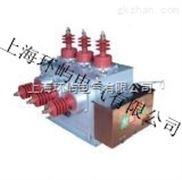 ZW10-10/630-20真空断路器价格