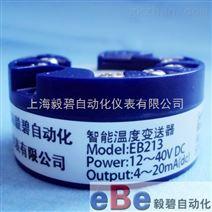 ER213上海毅碧EB213头部安装.智能变送器