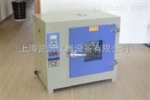 鼓风恒温干燥箱/电热干燥箱