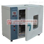 202-4电热恒温烘箱