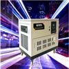 10千瓦汽油静音发电机/发电机品牌