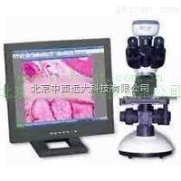 光学显微镜及成像设备