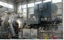 dynamowerke发电机