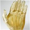 生物相容性材料/光敏樹脂