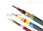 多芯控制电缆价格