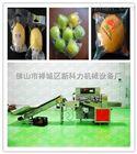 水果枕式包装机厂家-秭归血橙包装机-橙子带打孔功能包装机
