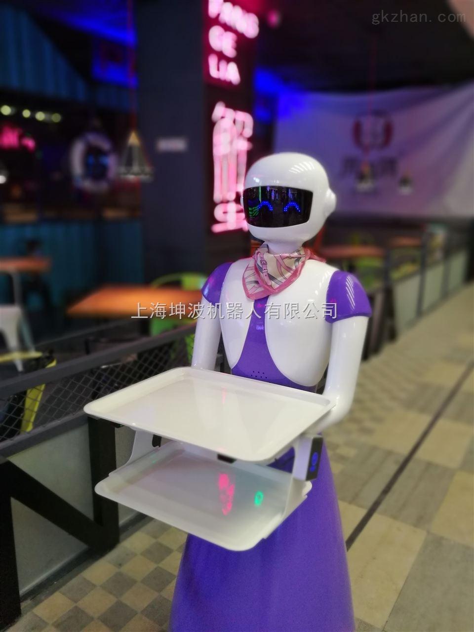 上海展会出租服务机器人