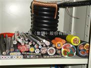 FDZ-GVV风力发电机用耐寒阻燃电力电缆