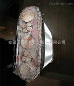 全国供应ZR-F46(FV)氟塑料耐高温电力电缆厂家zui新价格