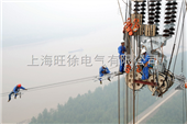 DNM电力牵引绳