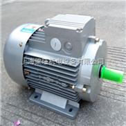MS112M-6(2.2KW)-MS112M-6(2.2KW)-台州清华紫光电机-上海紫光电机直销