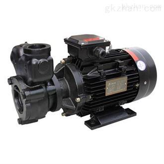 锅炉高压补水小型热水泵