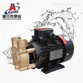 WD-016S高温高压旋涡泵