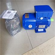 中研紫光YVF-90L-4变频电机