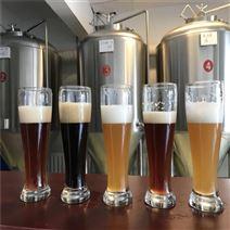 酿造生产精酿啤酒设备厂家
