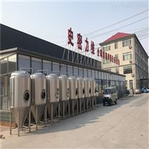 酿造精酿啤酒的设备一套价格及厂家