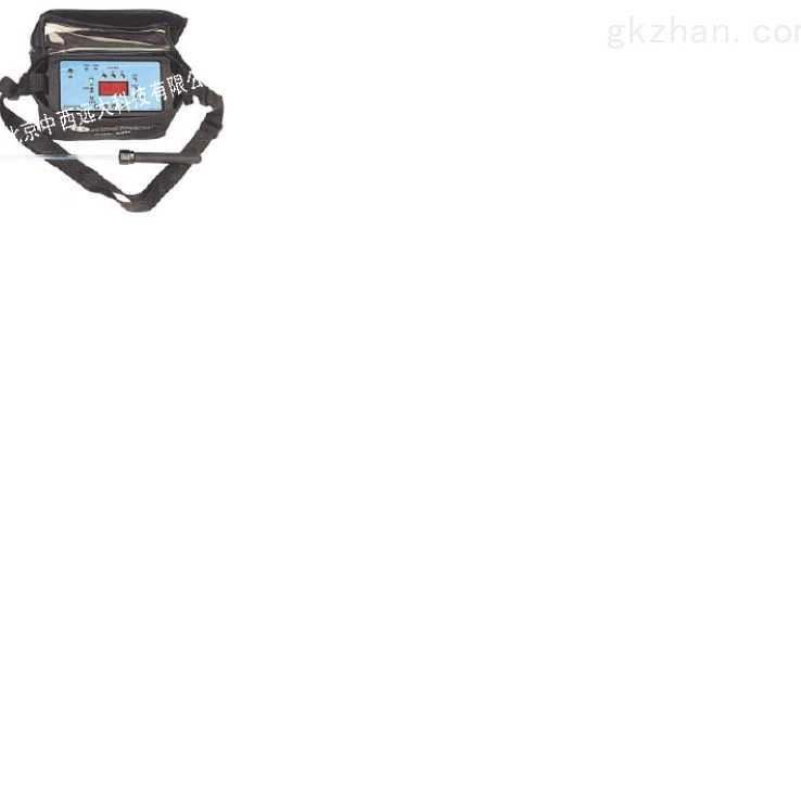 便携式氢气检测仪(美国) 型号:IQ-350-H2