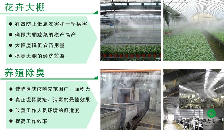 大型工业加湿机应用于花卉大棚可有效防止低温冻害