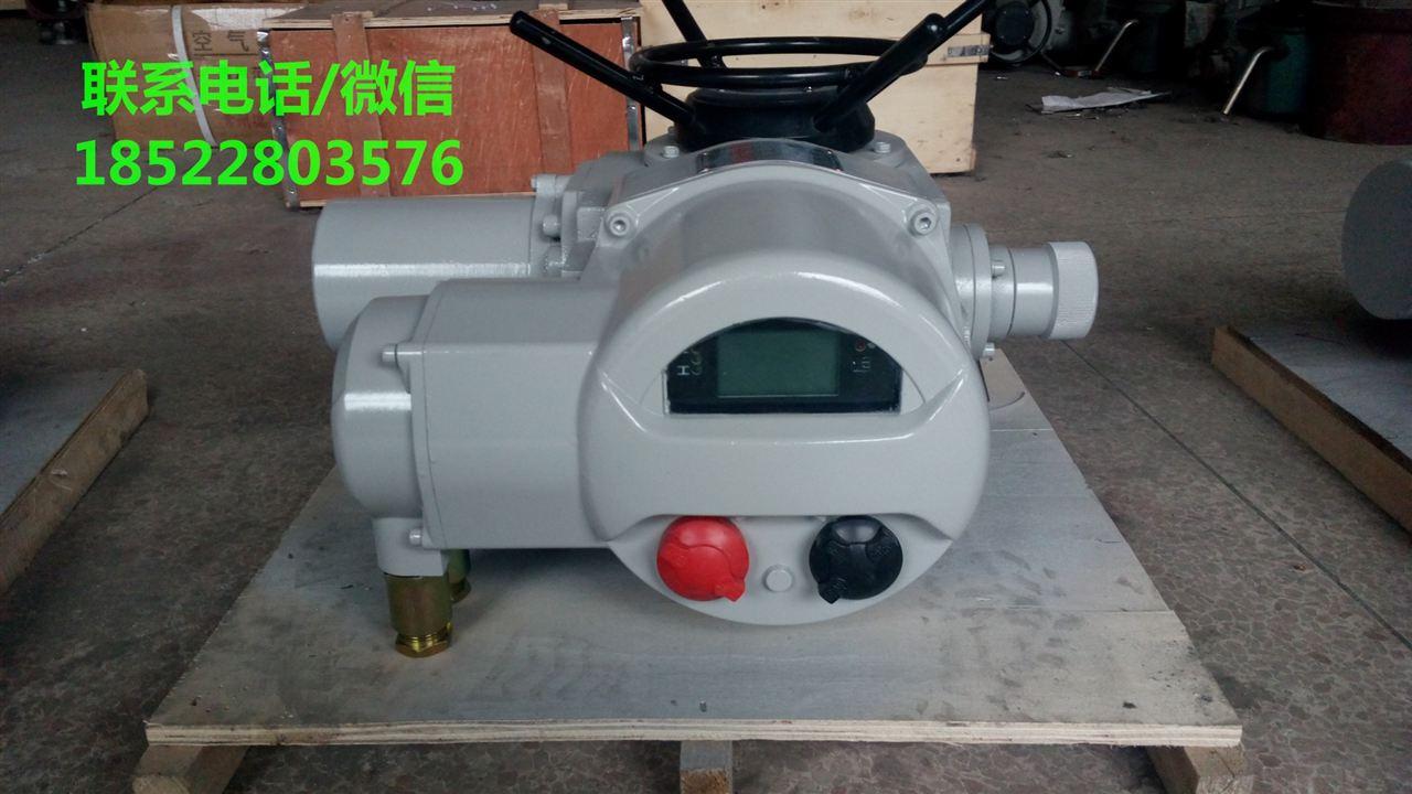 dzb30-18w/z/t dzb30-24w/z/t防爆阀门电动装置智能型