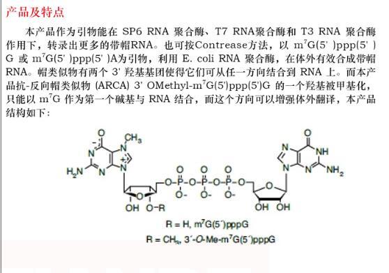 糖原分子结构示意图