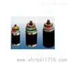 BP-VVPP2变频屏蔽型电力电缆