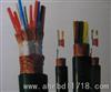 ZR-DJVP2V,ZR-DJVPV22阻燃计算机电缆