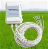 ST-TW智能土壤温度监测记录仪