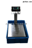 电子台秤150kg电子秤台称亚津T510S系列防水电子台秤