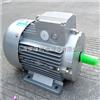 MS112M-6(2.2KW)MS112M-6(2.2KW)-台州清华紫光电机-上海紫光电机直销