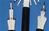 KFFRP/450/750V-12*1.0耐高温防腐型氟塑料控制电缆KFFRP-12*1.0